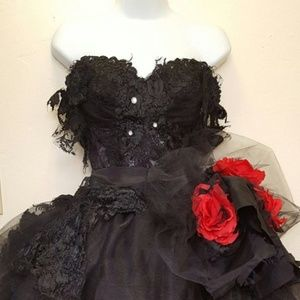 BELLA BLACK SWAN Goth Corset Wedding Ballgown Set